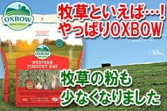 うさぎ用品:牧草 OXBOWウエスタンチモシー【大サイズ:1130g】