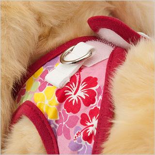 【アロハプリティピンク】装着はマジックテープなので、多少暴れるうさぎちゃんでもつけやすくなっています。
